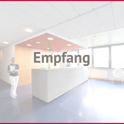 MSW-Team-Empfang